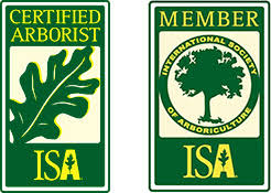 richmond certified arborists