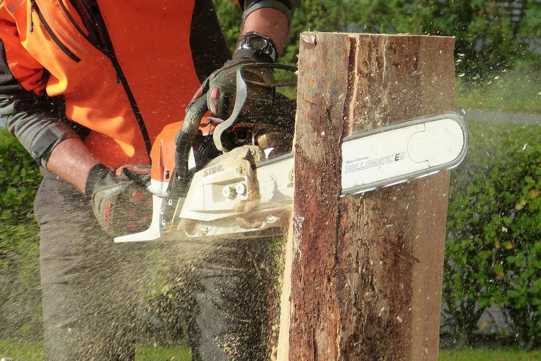 tree removal richmond