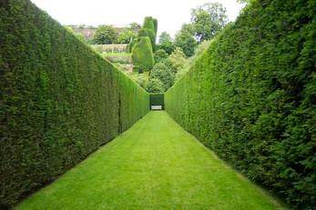 heddging-richmond